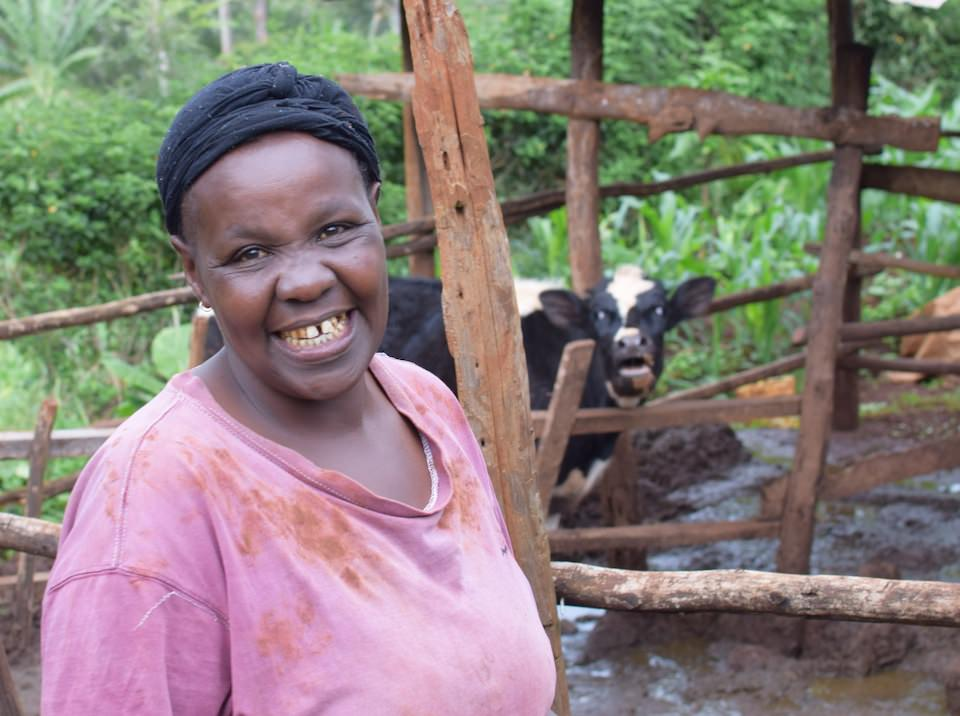 Gladys, her cow, and her flourishing forest garden